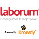 Laborum Consulting